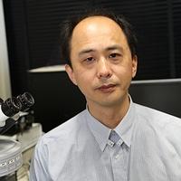 Akira Muto
