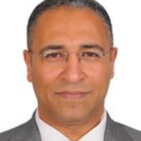 Prof. Tamer A. Gheita