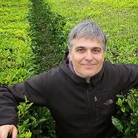 Daniel Montesinos