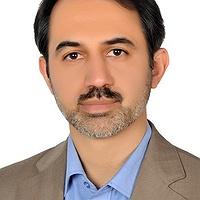 Salman Ebrahimi-Nejad