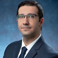 M. Amin Hariri-Ardebili